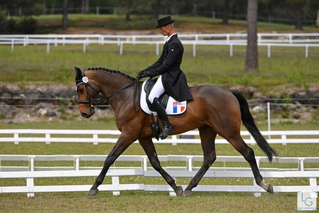 Christopher-six-hampton-p-syndicat-cavalier-concours-complet-international-membre-equipe-de-france-equitation (1)