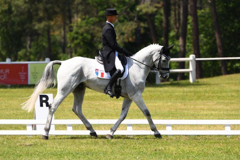 chevaux-a-vendre-christopher-six-totem-de-brecey-cci4etoile-long-saumur-2019-cavalier-concours-complet-pension-box-paddock-valorisation-coaching-gazeran-78 (5)