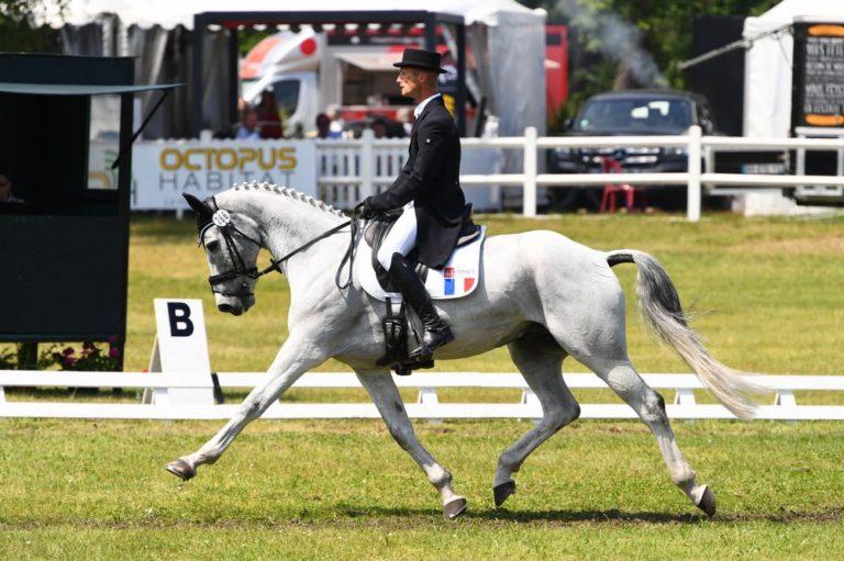 chevaux-a-vendre-christopher-six-totem-de-brecey-cci4etoile-long-saumur-2019-cavalier-concours-complet-pension-box-paddock-valorisation-coaching-gazeran-78 (6)