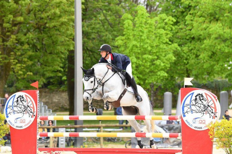 chevaux-a-vendre-christopher-six-totem-de-brecey-cci4etoile-long-saumur-2019-cavalier-concours-complet-pension-box-paddock-valorisation-coaching-gazeran-78 (7)