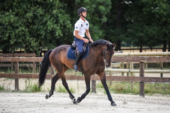 ecurie-de-la-cendriniere-christopher-six-chevaux-Undecover-BHS-2